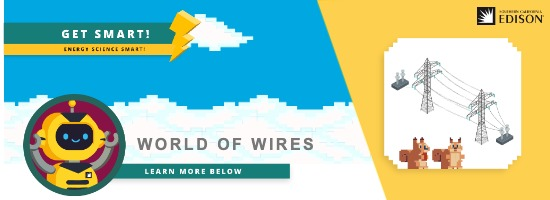 Worlds of Wires