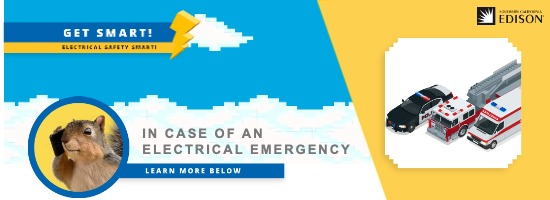 In case of electrical emergency